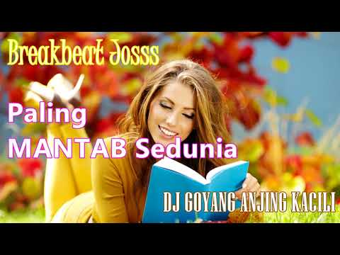 DJ GOYANG ANJING KACILI PALING ENAK SEDUNIA