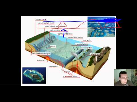 Ocean Basins (Part 2): Features of the Ocean Floor (Deep Ocean Basins)