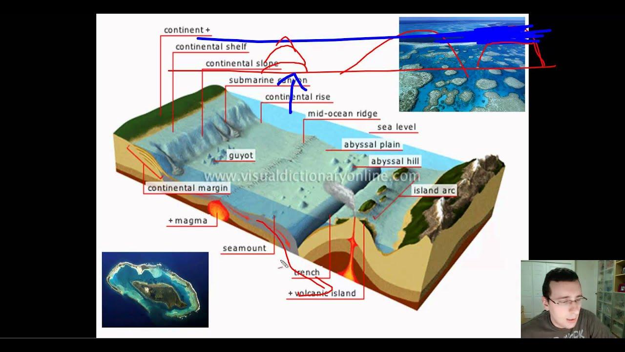 3d ocean floor diagram of sun ocean basins (part 2): features of the ocean floor (deep ... #5