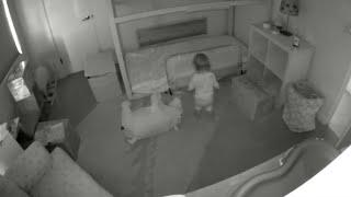 Мама установила видеокамеру в детскую комнату, чтобы увидеть действия ребёнка и двух щенков ночью