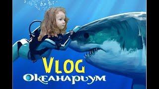 ВЛОГ / VLOG ОКЕАНАРИУМ ГИГАНТСКИЕ АКУЛЫ Ульяна первый раз увидела акулу