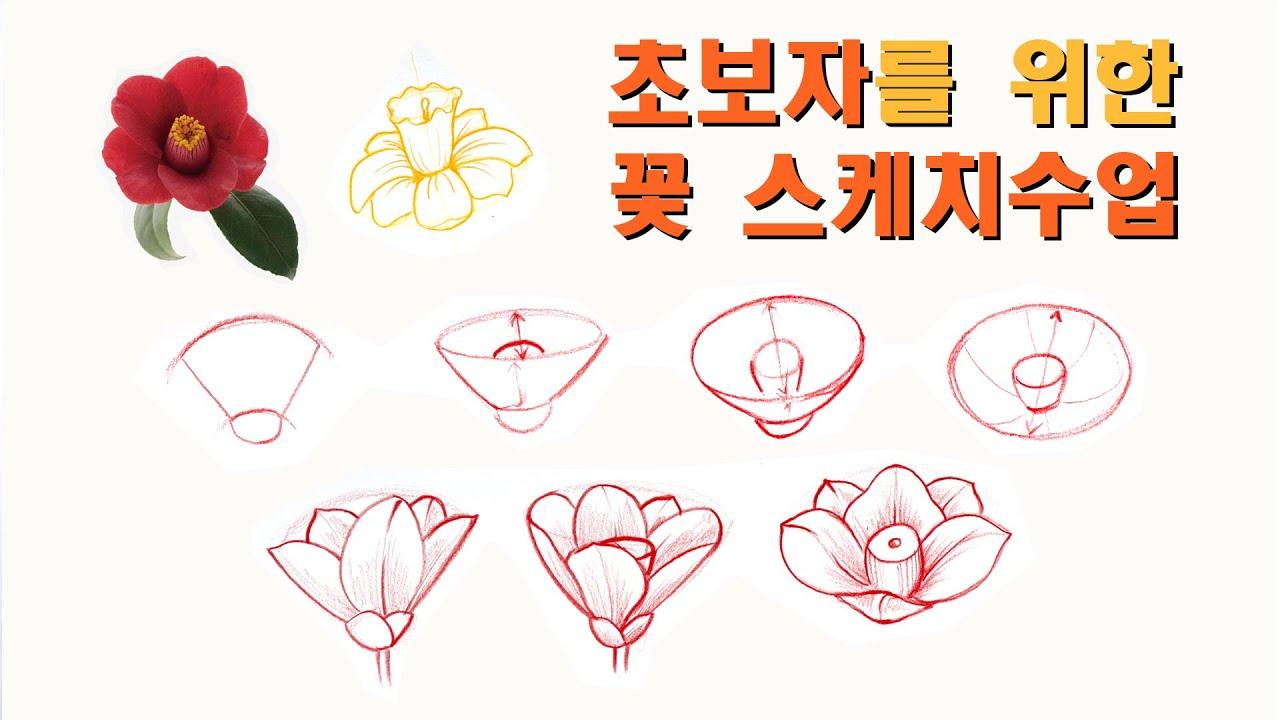 초보자를 위한 꽃 스케치수업 / 꽃송이 그리는 방법 / 꽃그리는 방법