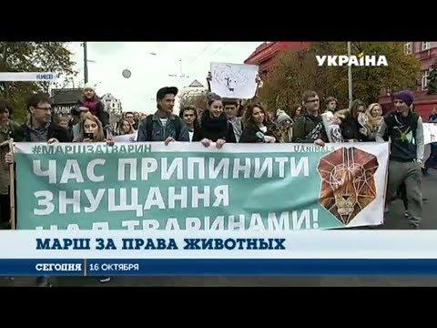 Сегодня: В 17-ти городах Украины прошел многотысячный марш за права животных