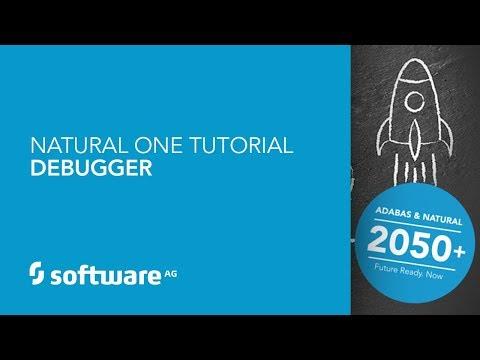 Natural ONE Tutorial - Debugger