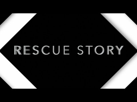 Rescue Story - Zach Williams (Lyrics)