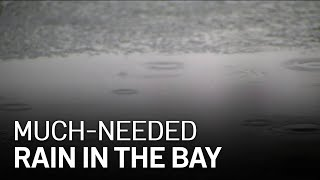 Bay Area Residents Welcome Back Rain Amid Recent Drought