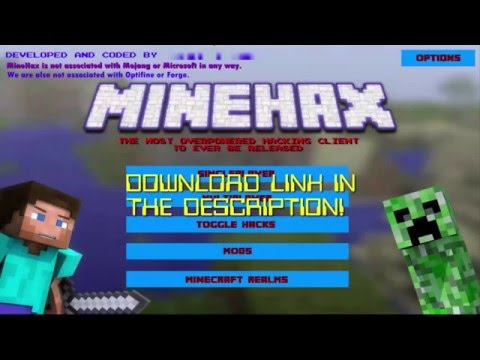 NEW HACKING CLIENT! MineHax!