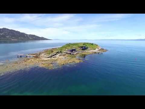 Copy of Picnic island, Tasmania