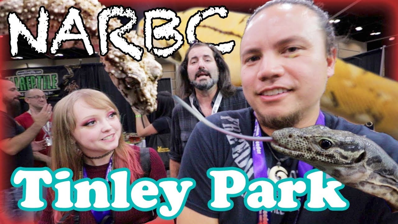 Tinley Park Reptile Show 2020.Cool Animals At Narbc Tinley Park Reptile Show