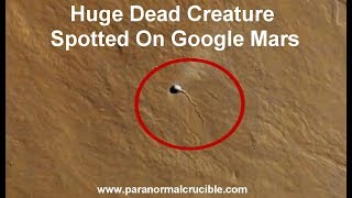 Huge Dead Creature Spotted On Google Mars? thumbnail
