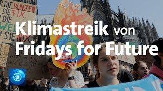 Klimastreik von Fridays for Future  live aus Köln