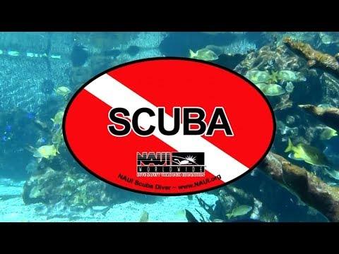 NAUI SCUBA DIVER COURSE - 1