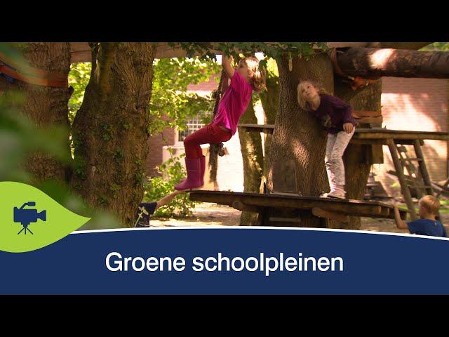 Groene schoolpleinen voor gezonde en vitale kinderen
