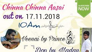 Chinna Chinna Aasai Veena & Flute