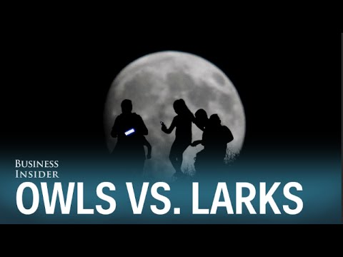"night owls vs morning larks It turns out there may be truth to the whole ""morning larks vs night owls"" thing i've invited folks out for breakfast meetings or predawn workouts."