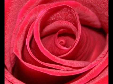 Клип De-Phazz - Roses