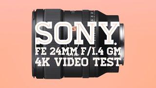 Sony FE 24mm f/1.4 G Master Lens - Sample Video