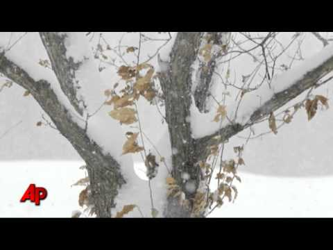 Video Essay: Winter Dawns in Amish Country from YouTube · Duration:  1 minutes 39 seconds