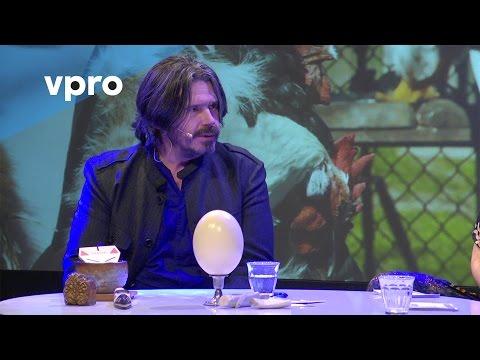 Koen Vanmechelen over Cosmopolitan Chicken project - Artfest