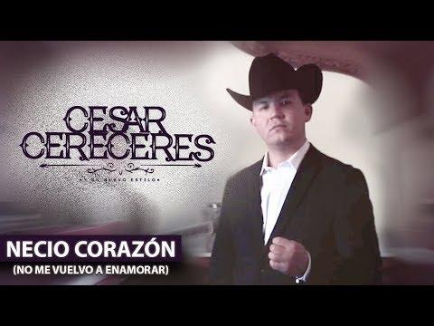 Cesar Cereceres  Necio Corazón  Oficial