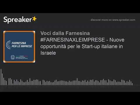 #FARNESINAXLEIMPRESE - Nuove Opportunità Per Le Start-up Italiane In Israele