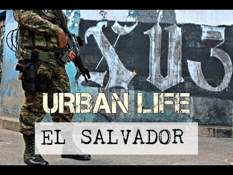 Urban Life in The Neighbourhoods of San Salvador
