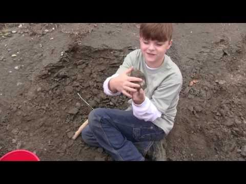 Riley the Paleontologist - Blue Springs Fossil Dig