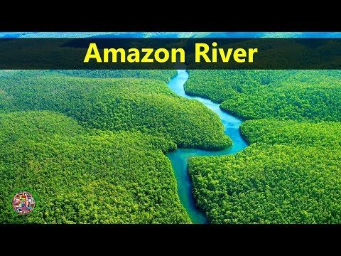 Best Tourist Attractions Places To Travel In Brazil | Amazon River Destination Spot
