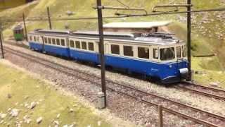 MOB aux 15 ans Rail Club Riviera