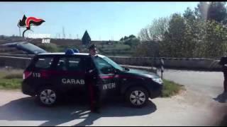 Traffico internazionale di stupefacenti, sgominata banda criminale dai Carabinieri di Andria