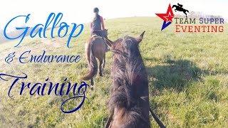 GALLOP TRAINING || GoPro
