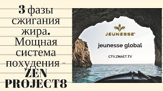 3 фазы сжигания жира. Мощная система похудения - ZEN PROJECT8. Jeunesse Global