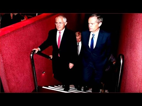 The Stream - Making sense of Australia's understated election