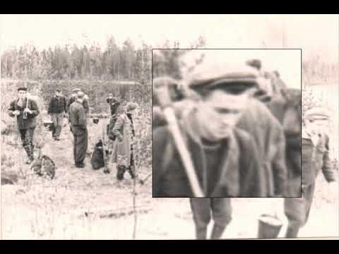 Arkangel 1958. Matka selviytymisleirille.