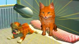 Играем в СИМУЛЯТОР КОТА 🐱🐱🐱 #15 Кот и собака мульт-игра про котят развлекательное видео