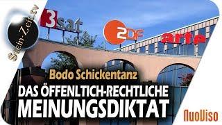 Das öffentlich-rechtliche Meinungsdiktat - Bodo Schickentanz bei SteinZeit