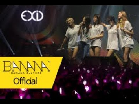 [EXID(이엑스아이디)] EXID ASIA TOUR IN SEOUL 2017 (Full ver.)