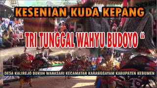 Download lagu FULL JANTURAN EBEG WANASARI KARANGGAYAM KEBUMEN MP3