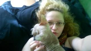 Субботнее утро 21 мая я лежу в постели, кошка будит, живые грелки