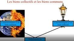 Les biens collectifs et les biens communs