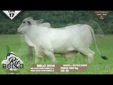 LOTE 17   BELO 3014