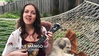 Pineapple Mango fingerstyle ukulele w/ Dani Joy (Daniel Ho song)