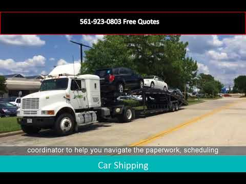 Car Shipping To Florida 561-923-0803