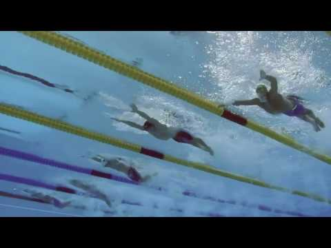 Butterfly Schooling Le Clos
