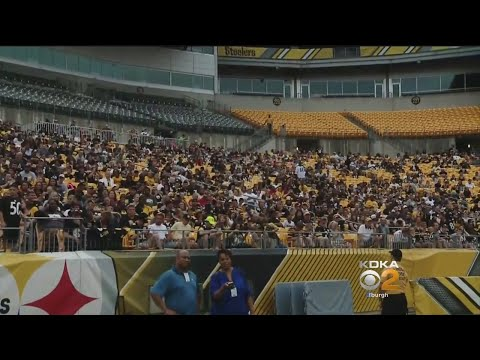 Fans Flock To First Steelers Family Fest At Heinz Field
