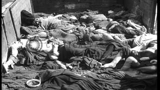 Stack of naked bodies at crematorium and pile of prison uniform removed from dead...HD Stock Footage