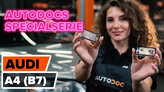 Montering Nummerplåtsbelysning AUDI A4: videoinstruktioner