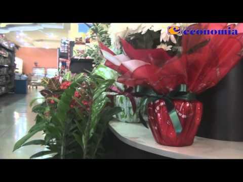 Flores Super Economia