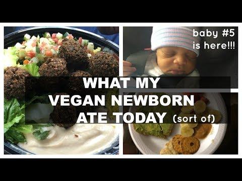 WHAT I ATE TODAY   VEGAN AT HOSPITAL   NEWBORN BABY!!