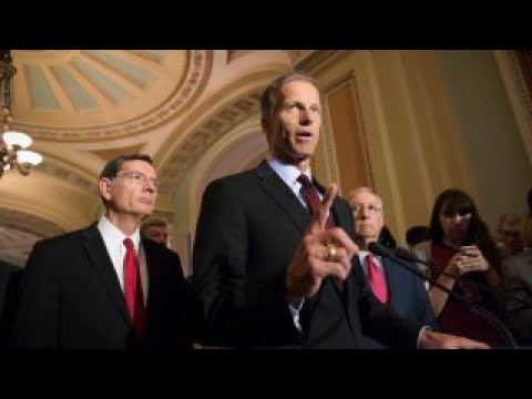 We have to find the path that gets 50 Republican votes: Sen. Thune